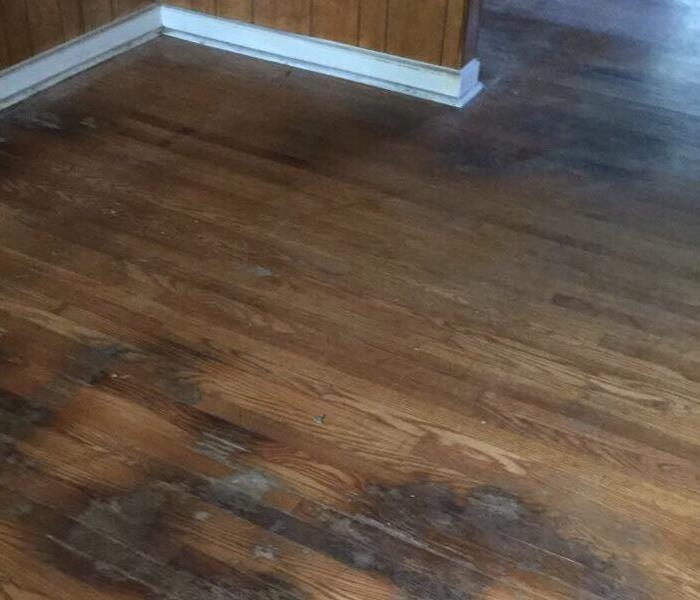 Wet Floor Boards