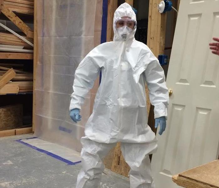 Mold Remediation The Growth of Mold