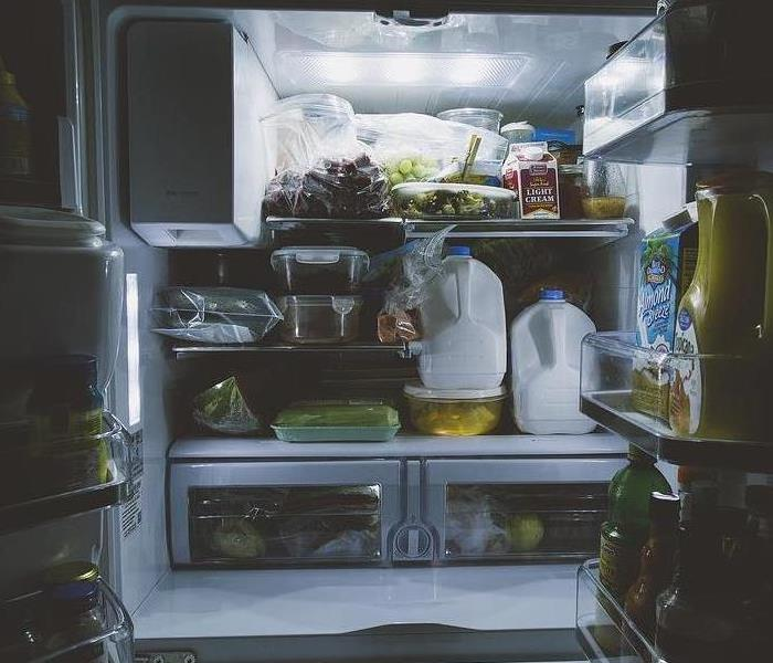 Mold Remediation Clean Refrigerator