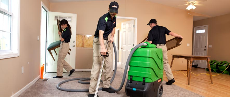 Brandywine, DE cleaning services